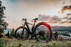 Električna kolesa so popolna za uživanje v naravi.